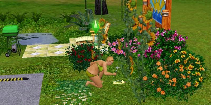 Sims2-1
