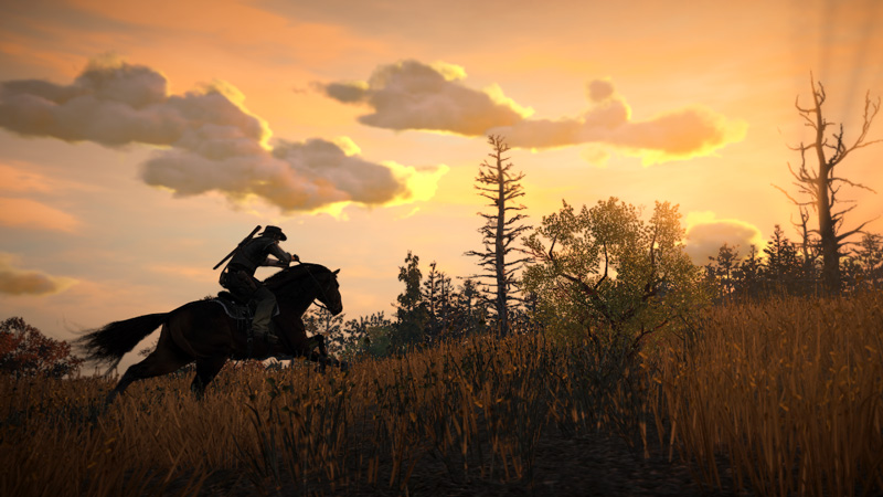 Rdr_screenshot_030
