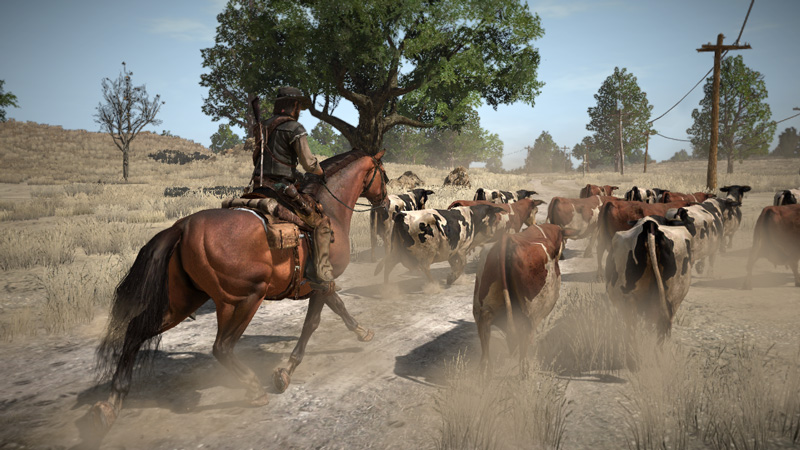 Rdr_screenshot_020